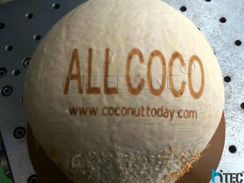 coconut co2 laser marking machine